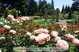 (c) 2004. Andrew Hall, PortlandBridges.com